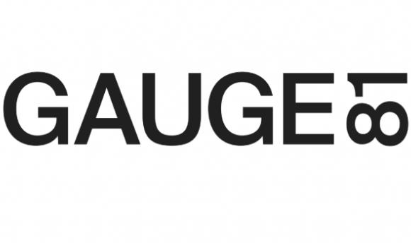 GAUGE81